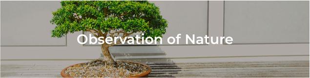 Observation of Nature